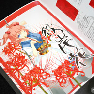 Touhou Souka Illustration Collection preview