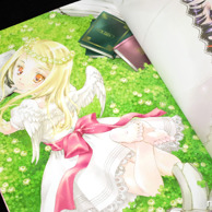 Caprice Illustration Works by Kaori Minakami preview