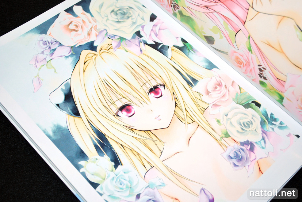 To Love-ru Illustrations Love Color - 10  Photo