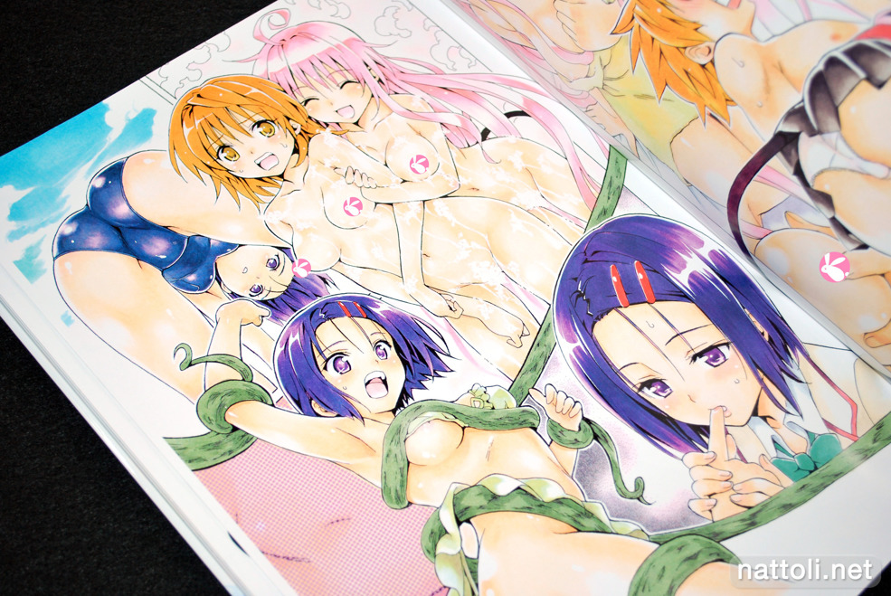 To Love-ru Illustrations Love Color - 23  Photo