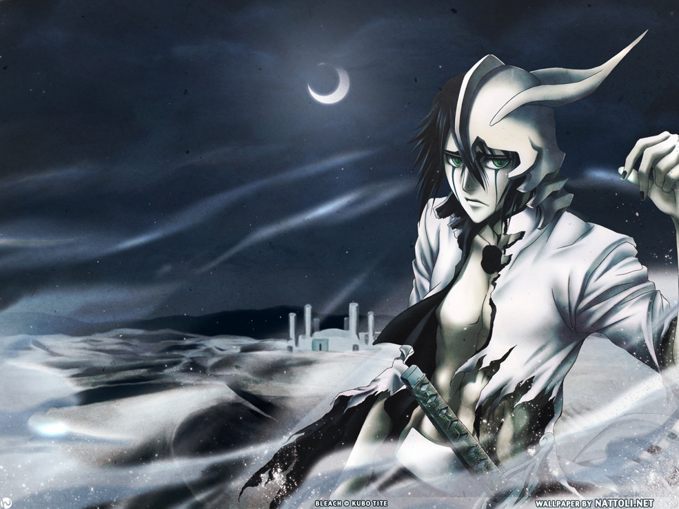Ulquiorra in the Sands  Wallpaper