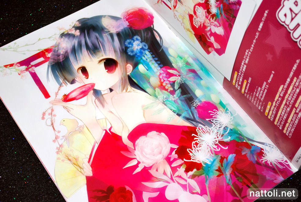 Bishoujo Illustrations New Year Collection 2011 -  Photo