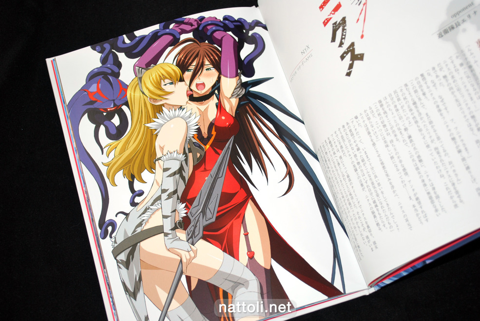 Queen's Blade Visual Book Vanquished Queens - 8  Photo