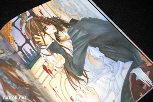Hino Matsuri Illustrations Vampire Knight - 14