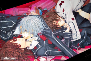 Hino Matsuri Illustrations Vampire Knight - 25