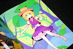 Ideolo's Carnival Fantasy Touhou Book - 7
