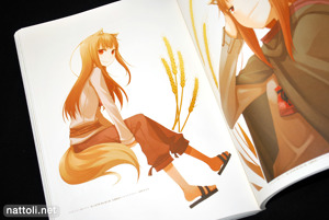 Ayakura Juu Illustrations Spice and Wolf - 25