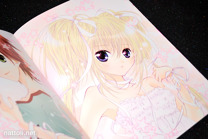Shugo Chara! Illustrations 2 - 13